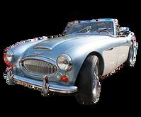 Austin Healey 100-4/6 & 3000 1953-1968