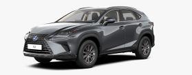 Nieuw Lexus Nx Crossover 300h AWD - E-CVT Business Line 1H9 - Mercury Grey
