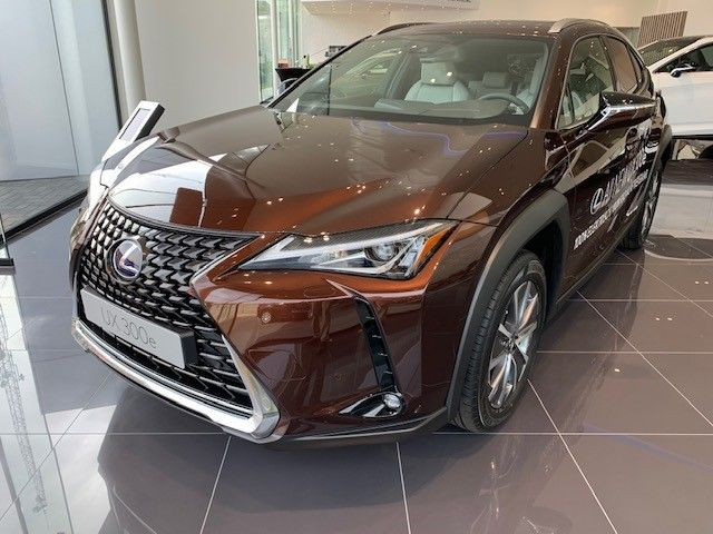 Nieuw Lexus Ux ev Crossover Electric AT Executive Line LHD 4X2 - Amber 2